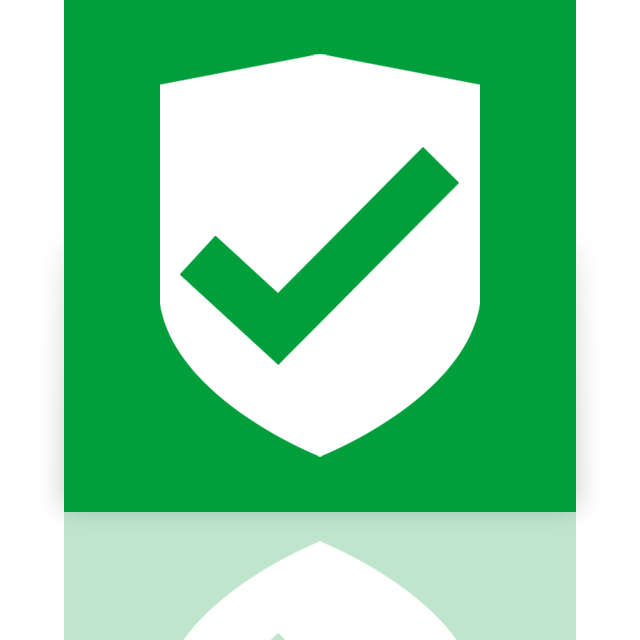 approved, mirror, security icon