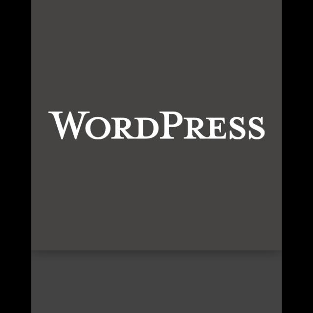 mirror, wordpress