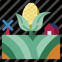 corn, healthy, food, cereal, organic, vegan, fruit