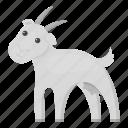animal, farm, goat, home, house, milk, pet