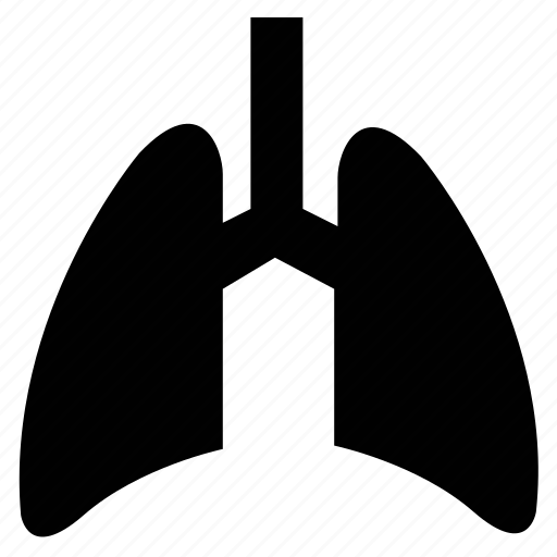 Anatomy, human body part, human lungs, lungs, part of body icon - Download on Iconfinder