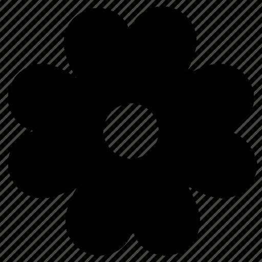 black medick, black medick flower, flower, spring wildflower, wildflower icon