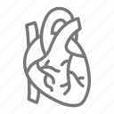 aorta, blood, heart, muscle, pump icon