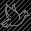 dove, magic, trick icon