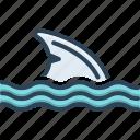 fin, feather, wing, flipper, plume, pinna, shark