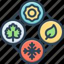 seasonal, recurring, periodic, maple, autumn, winter, summer