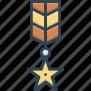 achievement, award, badge, expert, medal, military, veteran icon