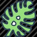 botanic, botanical, branch, flourish, leaf, monstera leaf, plant