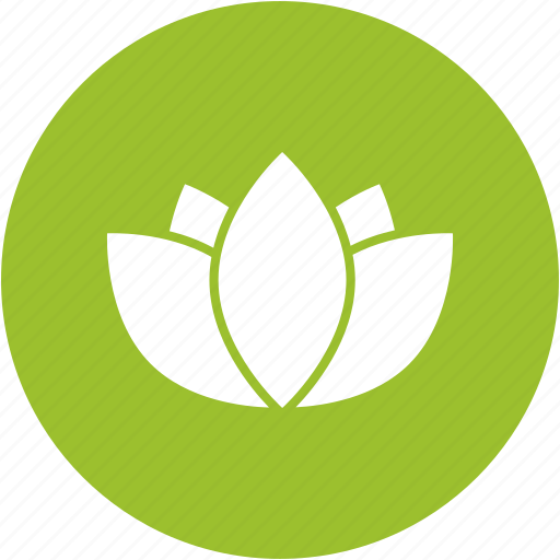 environment, flower, green, lotus, nature, yoga icon