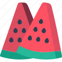 fruit, healthy, watermelon icon