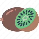 fruit, healthy, kiwi icon