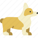 animal, dog, pet icon