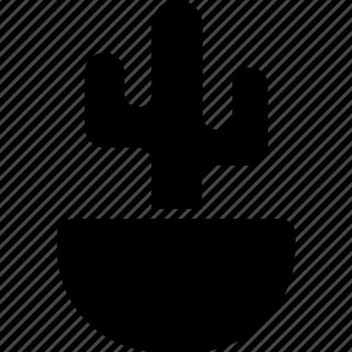 Botanical, cactus, desert, plant icon - Download on Iconfinder