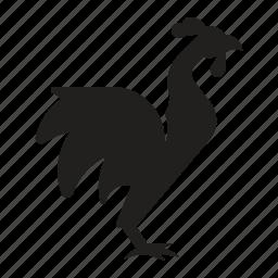 animal, bird, chicken, farm, rooster icon