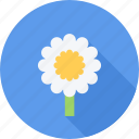 eco, flower, flowers, plant icon