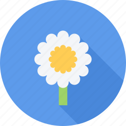 eco, flower, flowers, plant icon
