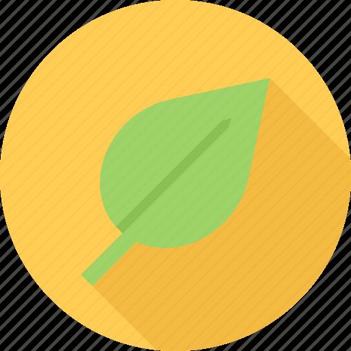 bio, eco, leaf, plant icon