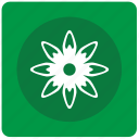 bud, calendula, flower icon