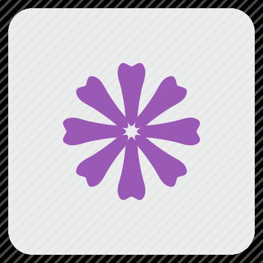 calendula, flower, plant icon