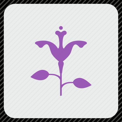 bud, calendula, flower, plant, rose icon