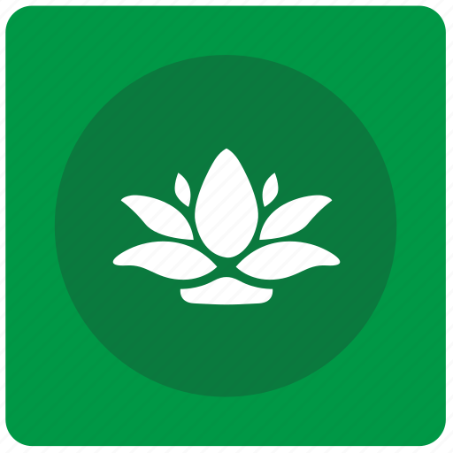 calendula, garden, home, plant, pot icon