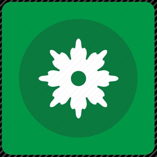 bud, flower, garden, plant icon