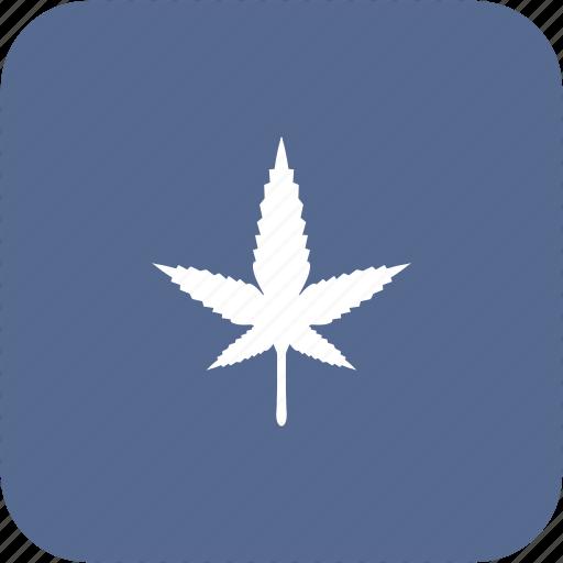 canabis, drug, medicine, plant, tabacco icon