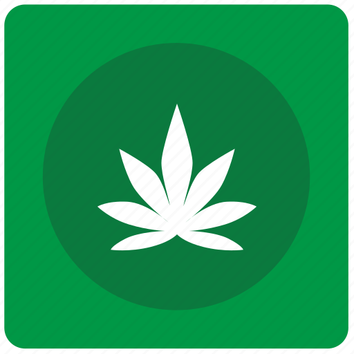 canabis, drug, leaf, tabacco icon