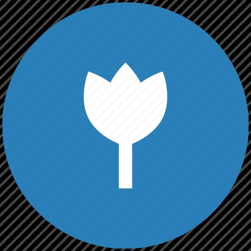 blue, bud, flower, plant, round icon