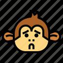 monkey, animal, mammal, wildlife, anxious