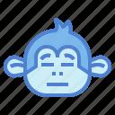 monkey, animal, mammal, wildlife, blah