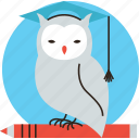 owl, student, study, professor, wisdom, learning, logo, education, teacher, smart