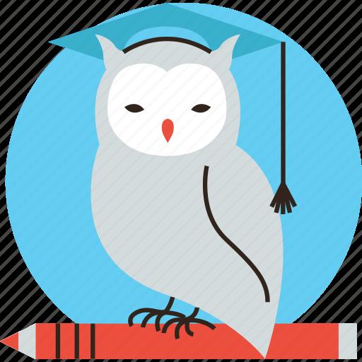 education, learning, logo, owl, professor, smart, student, study, teacher, wisdom icon