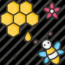 honey, organic, honeycomb, bee, bees icon