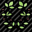 crown, laurel, olive, winner, wreath