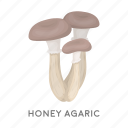 chill, delicacy, food, forest, honey agaric, mushroom, plant icon