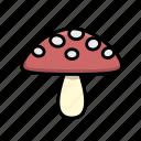 fungus, mushroom, red, toadstool icon
