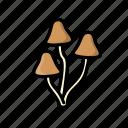 fungi, fungus, mushroom, shitake icon