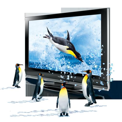 d, penguins icon