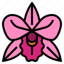 flower, orchid, perfume, scent icon