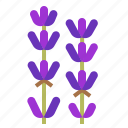aroma, essential, flower, fragrant, lavender, oil, scent icon