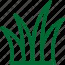 nature28, green, ecology, environment, plant, garden, gardening