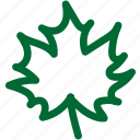 nature1, green, ecology, environment, plant, garden, gardening