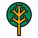 flora, forest, nature, pine, tree icon