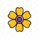 daisy, flower, garden, nature icon