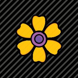 daisy, flower, garden, nature icon