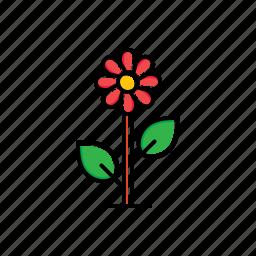 flower, garden, nature icon