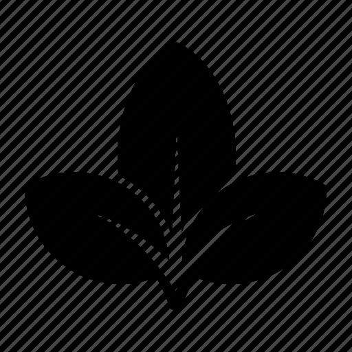 leaf, leaves, nature, three, tree icon