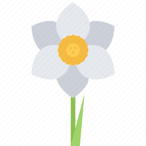 Eco, ecology, flower, green, narcissus, nature icon - Download on Iconfinder