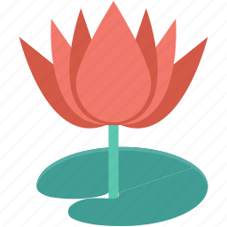 bud, flower, spring flower, tulip, tulip bud icon